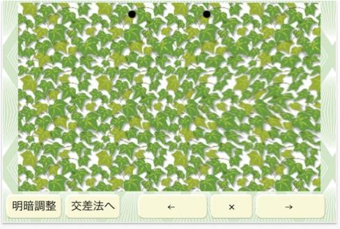 3d_sam.jpg