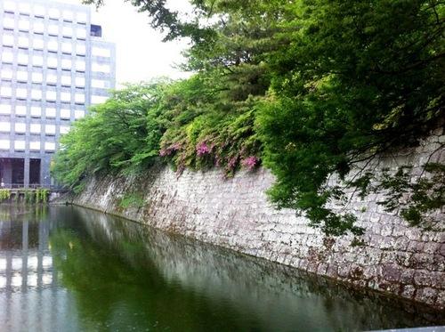 Photo 11-5-110085.jpg